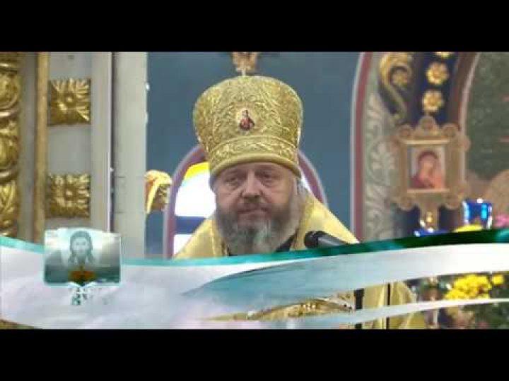 Кузбасский ковчег № 539