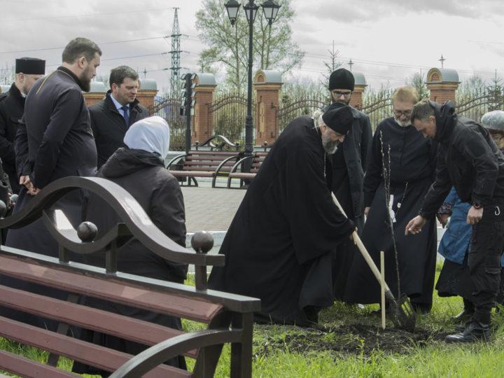 На территории собора Рождества Христова при Кузбасской семинарии была посажена яблоневая аллея