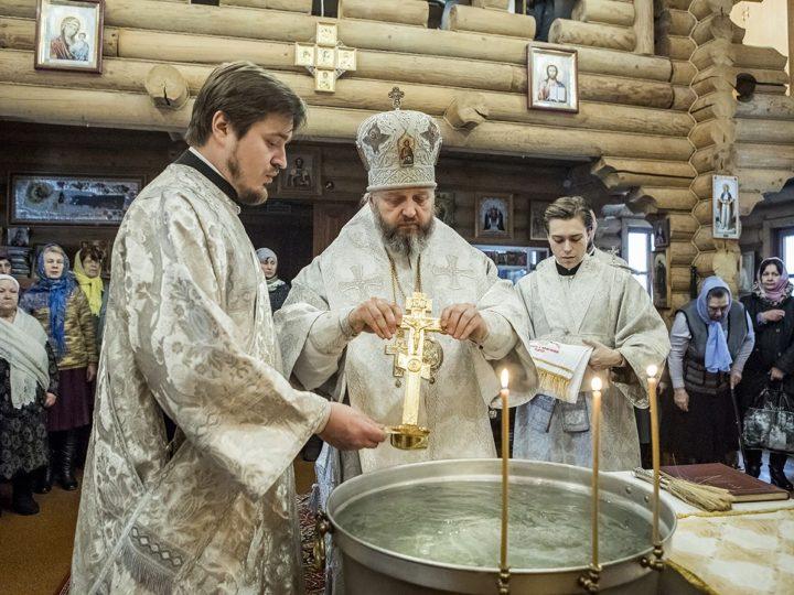 В Навечерие Богоявления митрополит совершил богослужение в храме благоверного князя Александра Невского