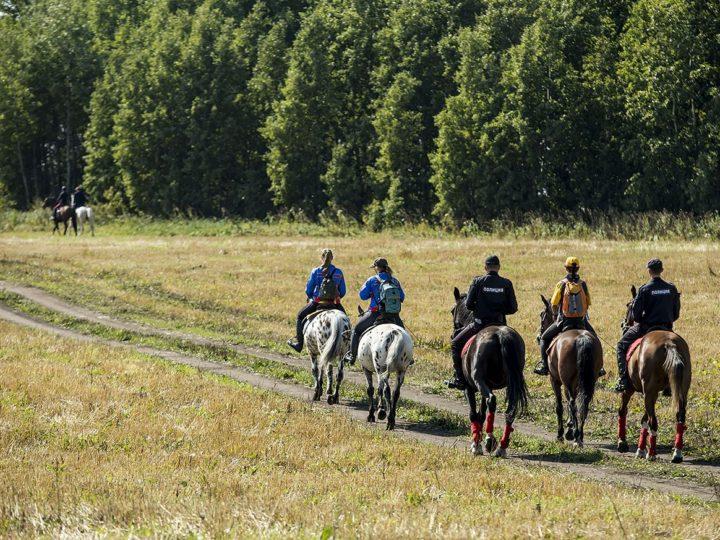6 сентября 2019 г. Старт I Всекузбасского конного хода в Кемеровском районе