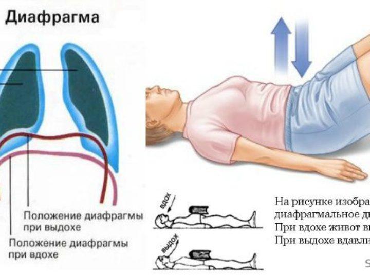 В Кемерове завершился первый день обучения на Курсах по профилактике деменции и инсульта