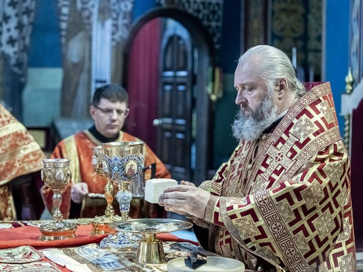 В неделю о расслабленном глава митрополии совершил Литургию в кафедральном соборе