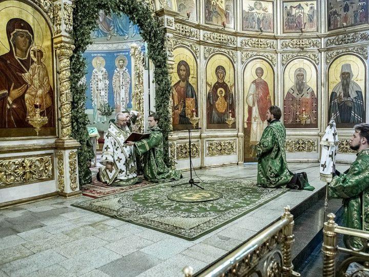 В праздник Пятидесятницы митрополит Аристарх совершил священническую хиротонию