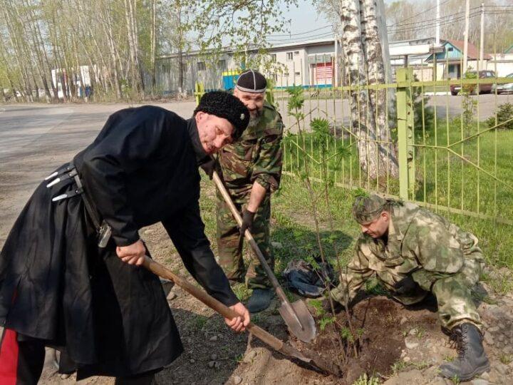 Прихожане новокузнецкого храма приняли участие в массовом озеленении посёлка