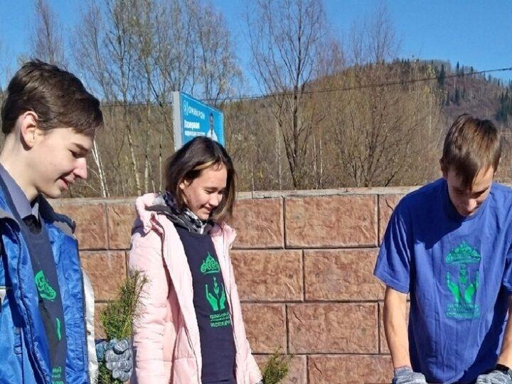 Волонтёры Междуреченска приняли участие в экологической акции по посадке деревьев